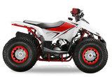 Velocifero Mini ATV 110cc Lizzard